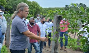 Mais de 200 profissionais do Ruraltins nas áreas da pecuária, piscicultura, agricultura e fruticultura foram capacitados