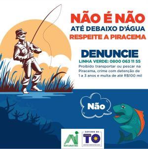 Banner_Não é não até debaixo d'água_Secom-Governo do Tocantins_300.jpg
