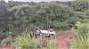 Acidentes de trânsito em várias partes do estado usaram ações do Corpo de Bombeiros Militar no resgate das vítimas