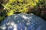 Jalapão: fervedouros estão entre os atrativos mais exóticos da região