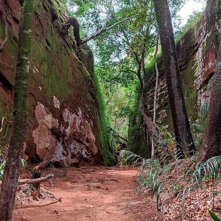 O ecoturismo se destaca na região do Jalapão_Crédito APA Sedematur-Mateiros.jpg