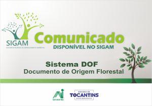 Comunicado - Sistema DOF - Documento de Origem Floresta disponível no Sigam_Ilustração Cleide Veloso-Governo do Tocantins_300.jpg