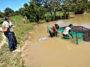 Ruraltins e parceiros beneficiam 30 famílias rurais de Taguatinga com a doação de alevinos