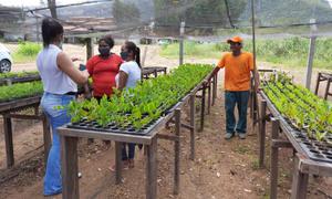 Viveiro da APA Serra do Lajeado recebe apoio técnico da Secretaria de Meio Ambiente do município
